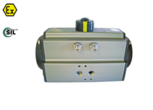 Pneumatic actuator (Type 5051 SR)