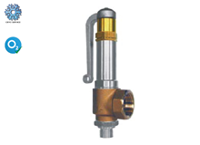 Cryogenic angle safety valve  (06416)