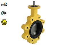 DVGW-Gas approved LUG butterfly valve (Type 2246)